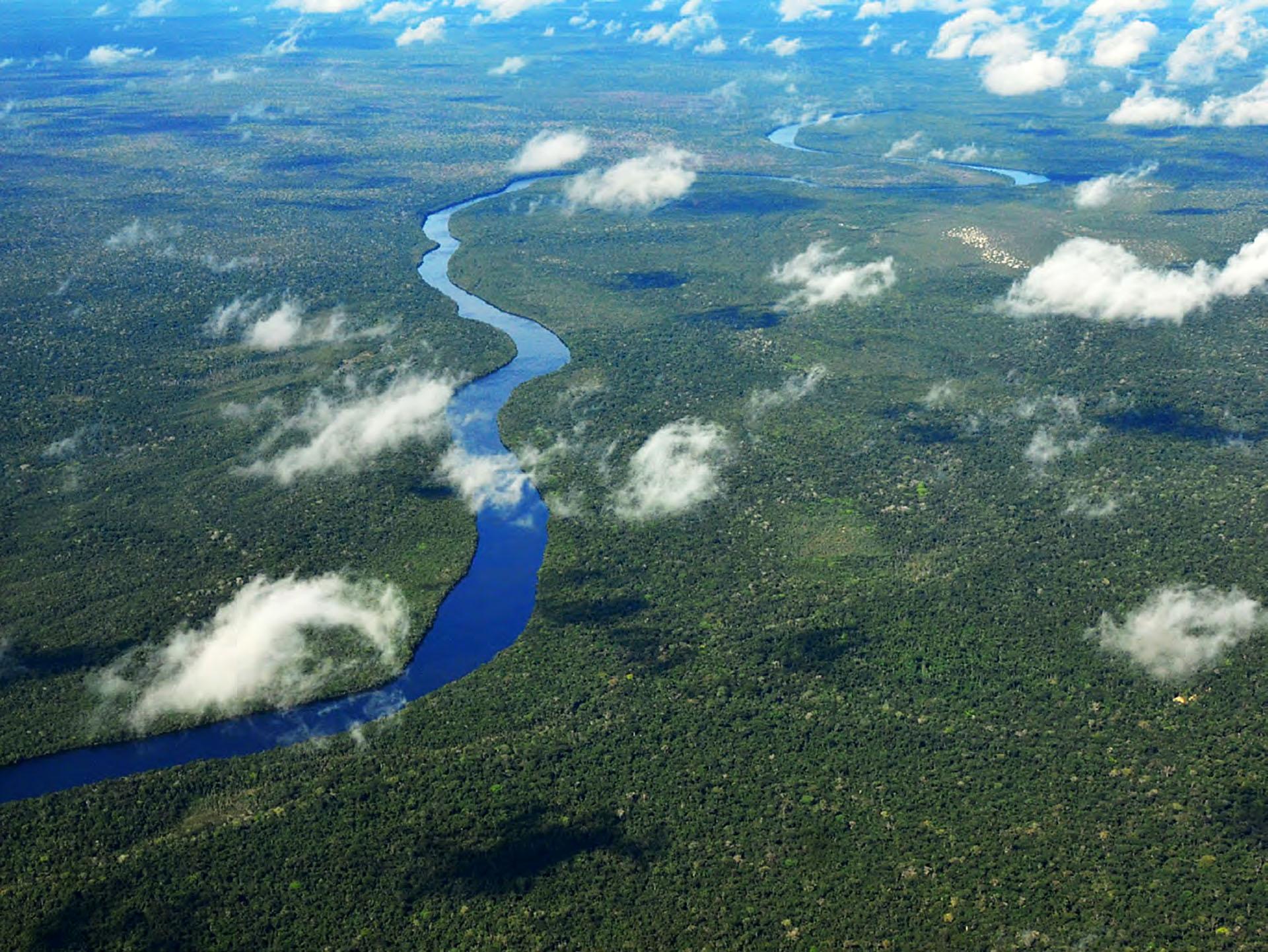 Programme Brésil ClimatePartner